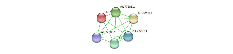 AIL77284.1 protein (Acinetobacter baumannii) - STRING interaction network