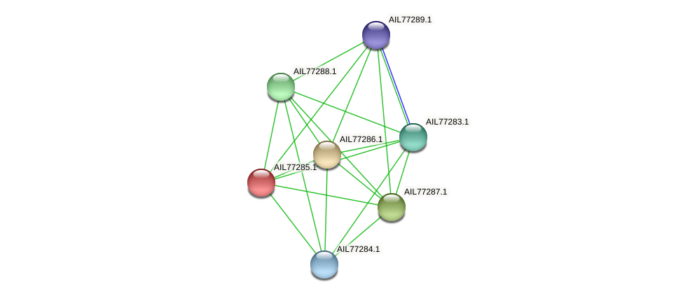 AIL77285.1 protein (Acinetobacter baumannii) - STRING interaction network