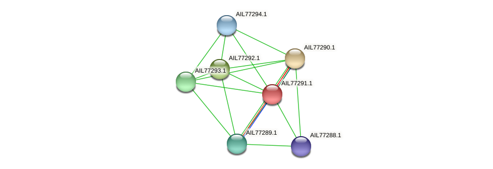 AIL77291.1 protein (Acinetobacter baumannii) - STRING interaction network