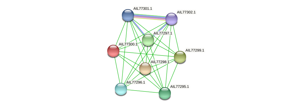 AIL77300.1 protein (Acinetobacter baumannii) - STRING interaction network