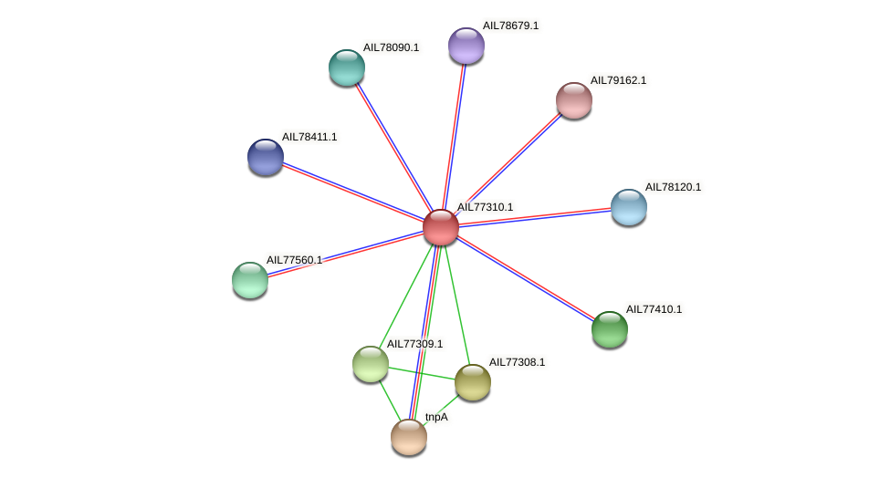 AIL77310.1 protein (Acinetobacter baumannii) - STRING interaction network