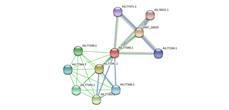 AIL77340.1 protein (Acinetobacter baumannii) - STRING interaction network