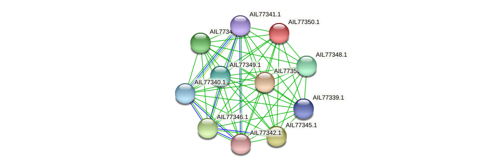 AIL77350.1 protein (Acinetobacter baumannii) - STRING interaction network