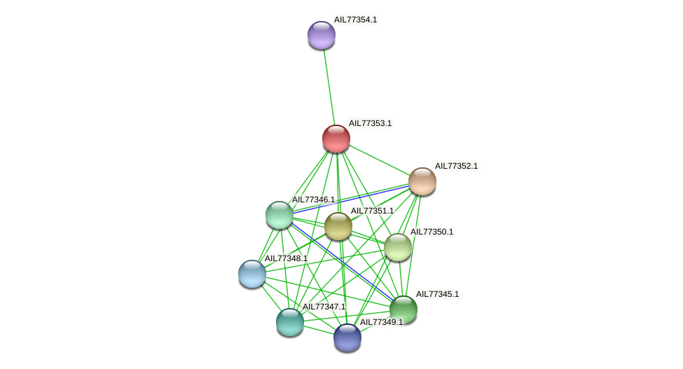 AIL77353.1 protein (Acinetobacter baumannii) - STRING interaction network