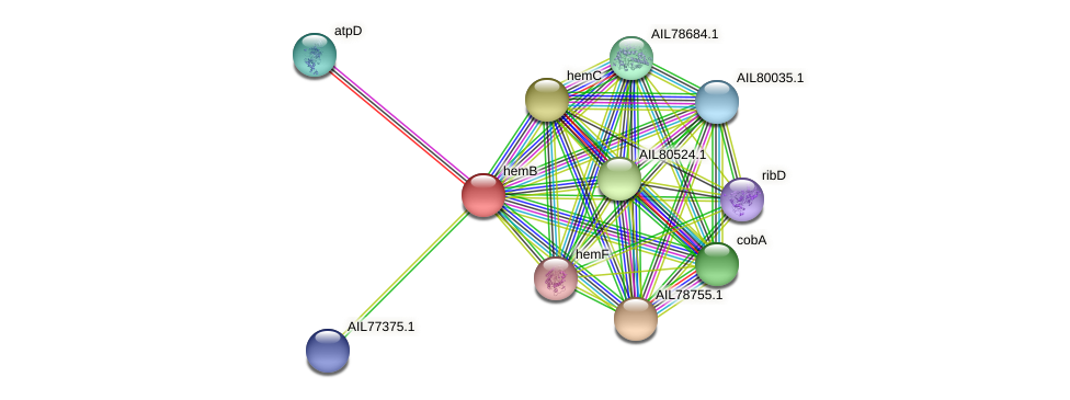 AIL77374.1 protein (Acinetobacter baumannii) - STRING interaction network