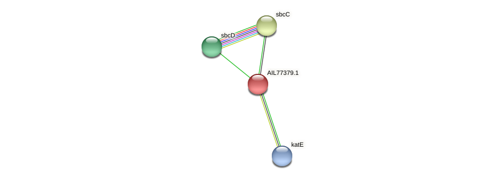 AIL77379.1 protein (Acinetobacter baumannii) - STRING interaction network