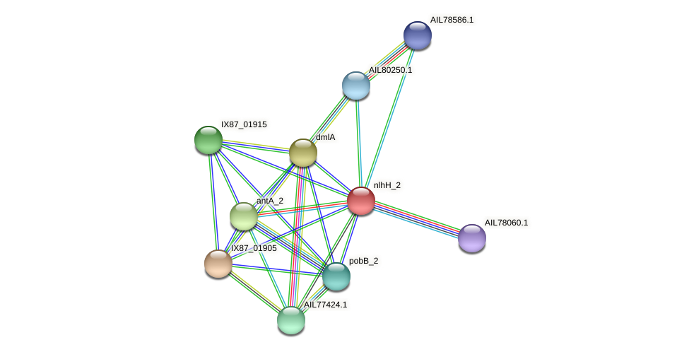 AIL77426.1 protein (Acinetobacter baumannii) - STRING interaction network