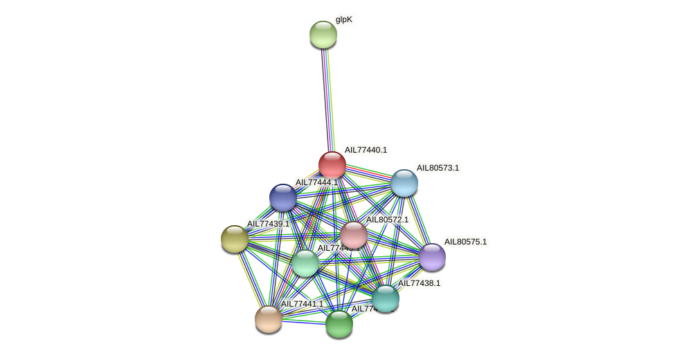 AIL77440.1 protein (Acinetobacter baumannii) - STRING interaction network