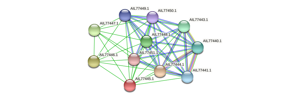 AIL77445.1 protein (Acinetobacter baumannii) - STRING interaction network