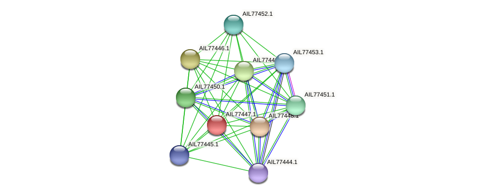AIL77447.1 protein (Acinetobacter baumannii) - STRING interaction network