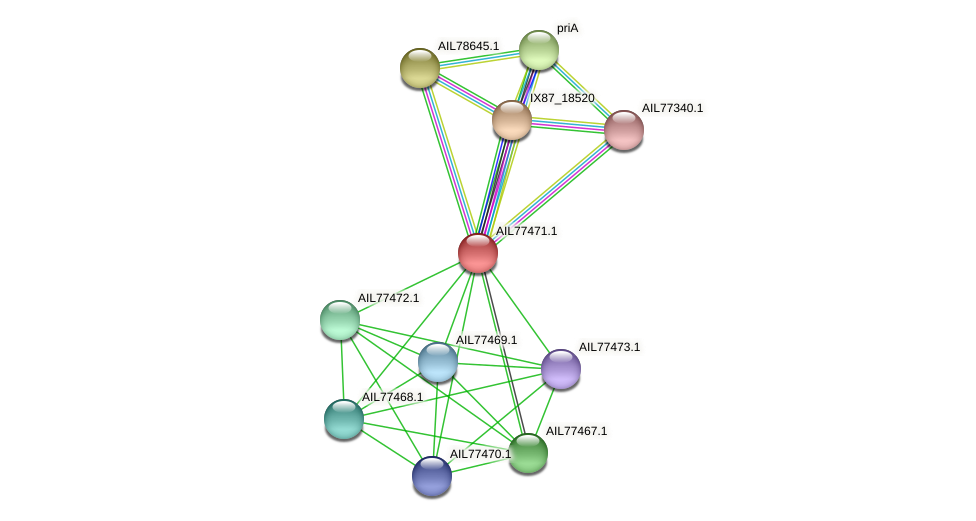 AIL77471.1 protein (Acinetobacter baumannii) - STRING interaction network