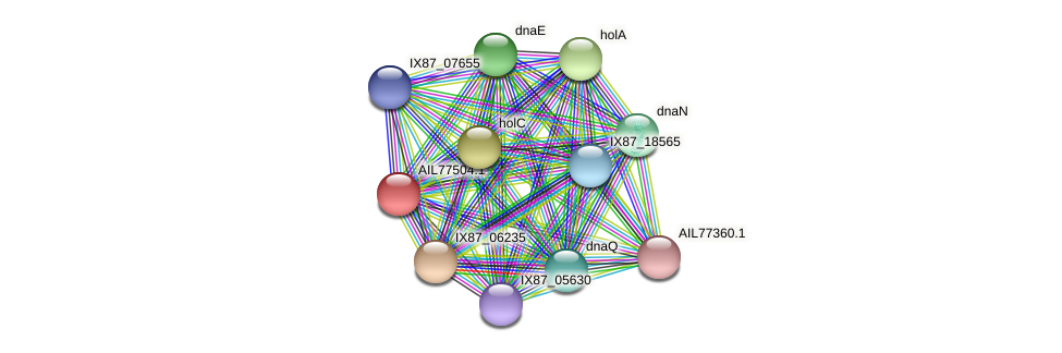 AIL77504.1 protein (Acinetobacter baumannii) - STRING interaction network