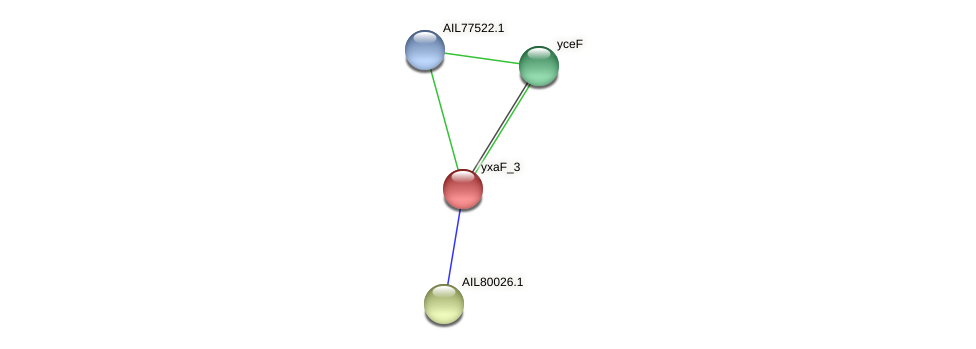 yxaF_3 protein (Acinetobacter baumannii) - STRING interaction network