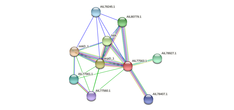AIL77563.1 protein (Acinetobacter baumannii) - STRING interaction network