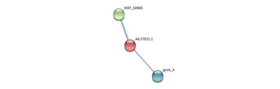 AIL77571.1 protein (Acinetobacter baumannii) - STRING interaction network