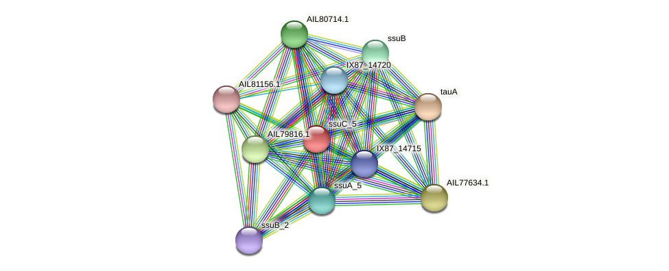 AIL77635.1 protein (Acinetobacter baumannii) - STRING interaction network