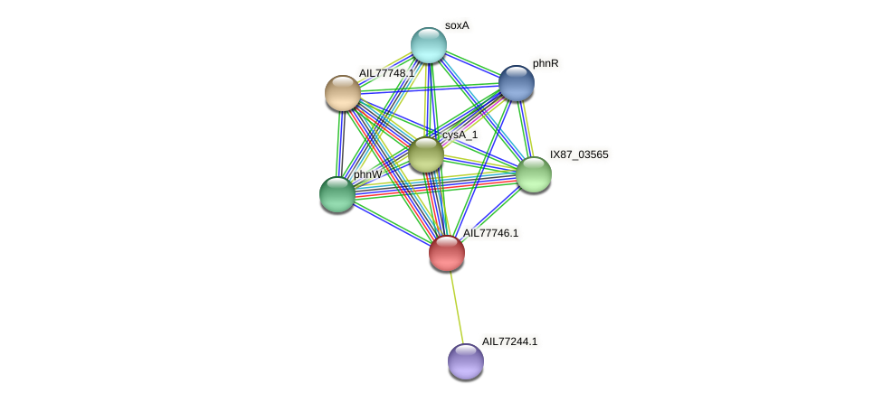 AIL77746.1 protein (Acinetobacter baumannii) - STRING interaction network