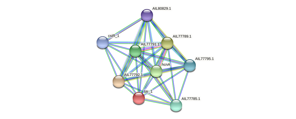AIL77788.1 protein (Acinetobacter baumannii) - STRING interaction network