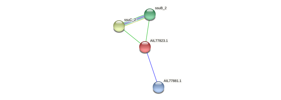 AIL77823.1 protein (Acinetobacter baumannii) - STRING interaction network