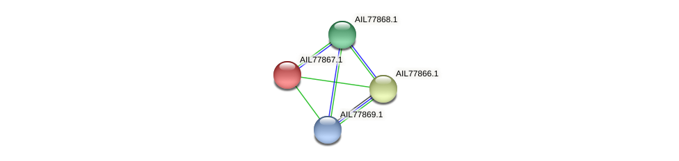 AIL77867.1 protein (Acinetobacter baumannii) - STRING interaction network