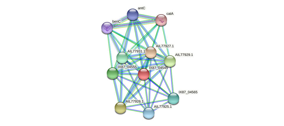 dmpM protein (Acinetobacter baumannii) - STRING interaction network