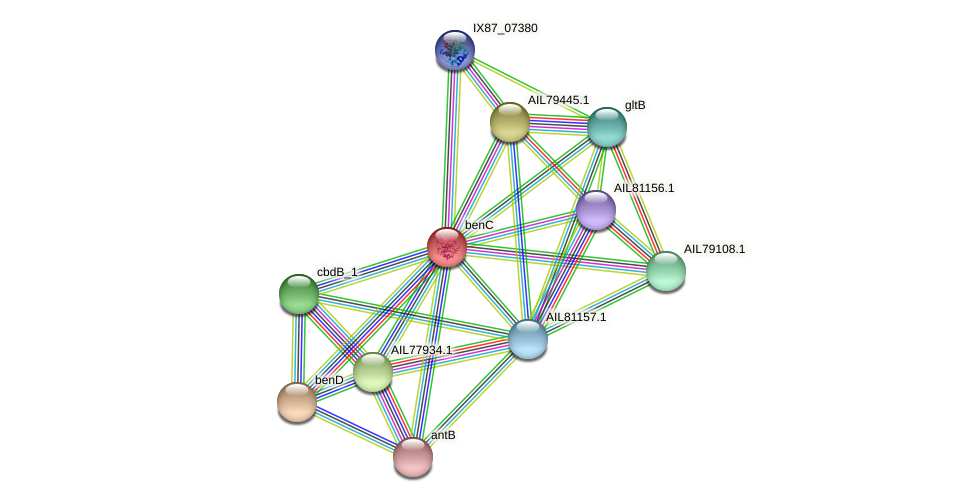 AIL77936.1 protein (Acinetobacter baumannii) - STRING interaction network