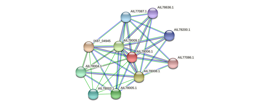 AIL78006.1 protein (Acinetobacter baumannii) - STRING interaction network
