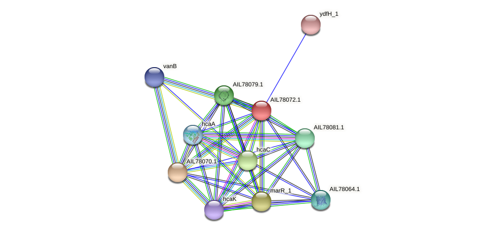 AIL78072.1 protein (Acinetobacter baumannii) - STRING interaction network