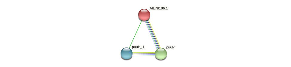 AIL78106.1 protein (Acinetobacter baumannii) - STRING interaction network