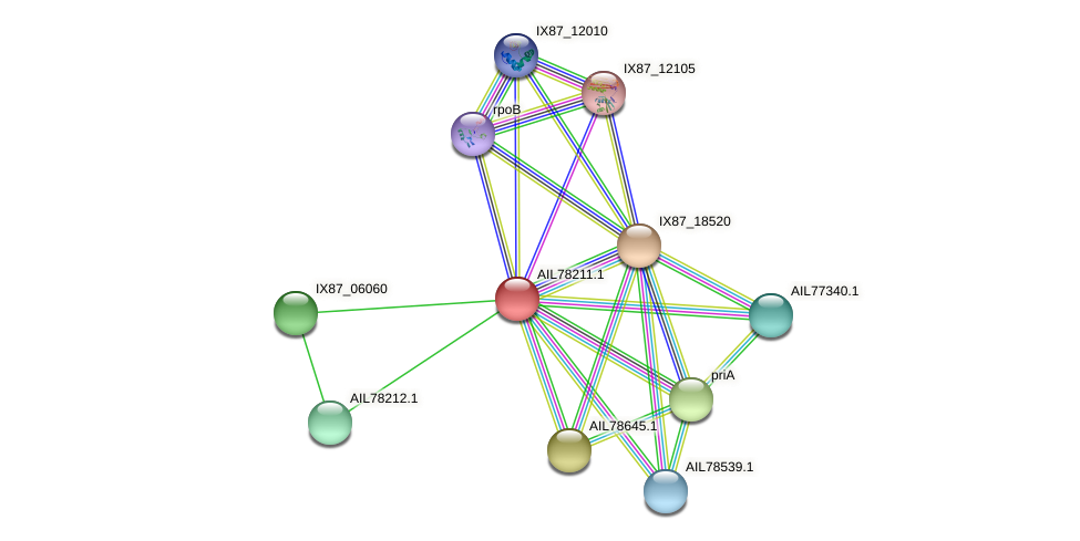 AIL78211.1 protein (Acinetobacter baumannii) - STRING interaction network
