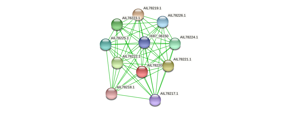 AIL78220.1 protein (Acinetobacter baumannii) - STRING interaction network