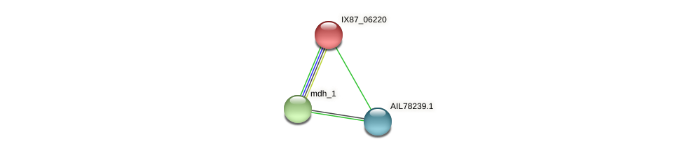 LV38_00687 protein (Acinetobacter baumannii) - STRING interaction network