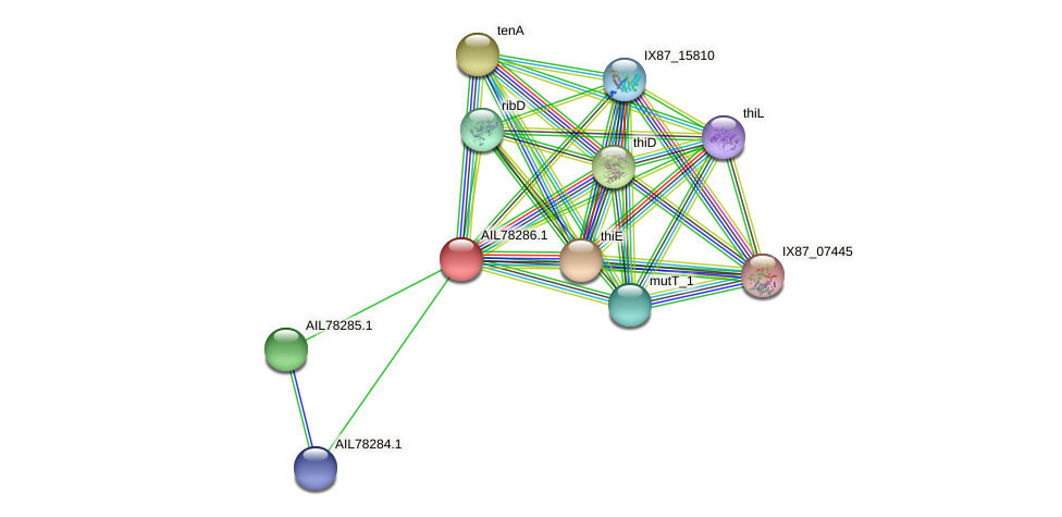 AIL78286.1 protein (Acinetobacter baumannii) - STRING interaction network