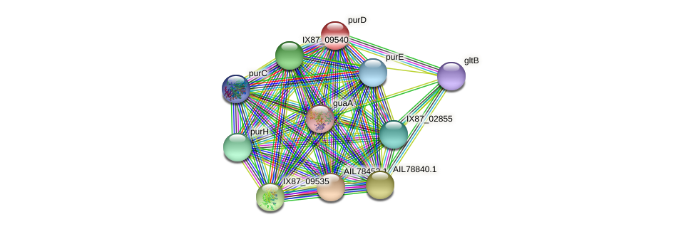 purD protein (Acinetobacter baumannii) - STRING interaction network