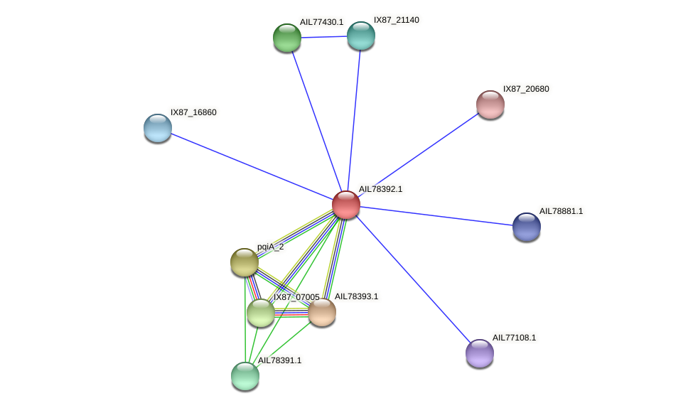 AIL78392.1 protein (Acinetobacter baumannii) - STRING interaction network