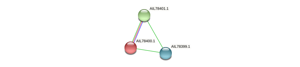 AIL78400.1 protein (Acinetobacter baumannii) - STRING interaction network