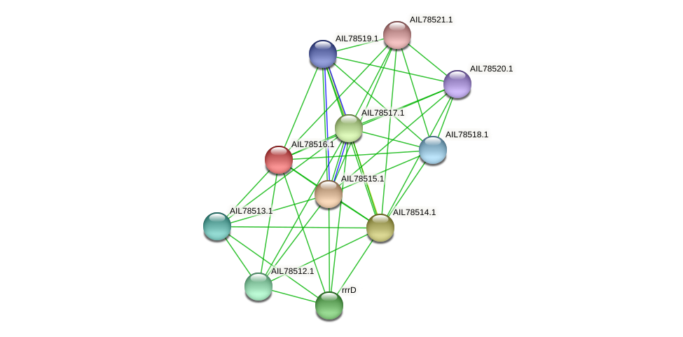 AIL78516.1 protein (Acinetobacter baumannii) - STRING interaction network