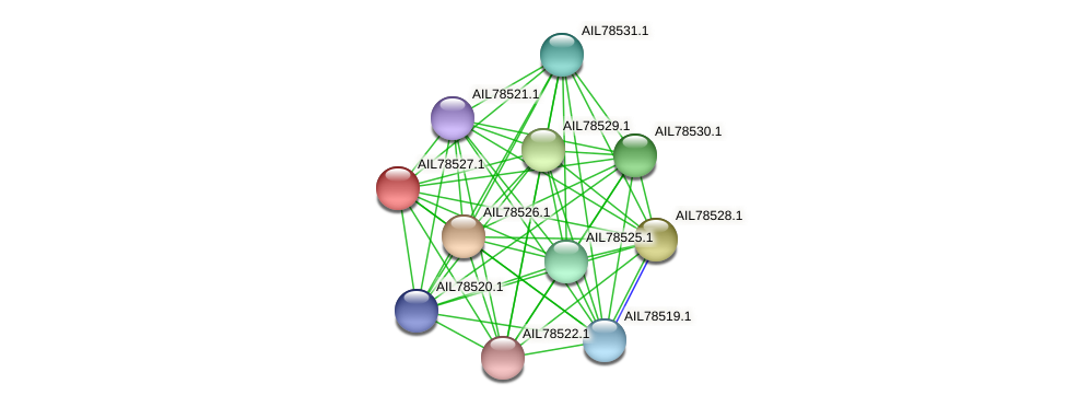 AIL78527.1 protein (Acinetobacter baumannii) - STRING interaction network