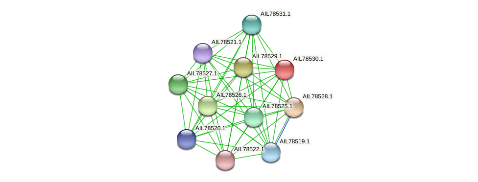 AIL78530.1 protein (Acinetobacter baumannii) - STRING interaction network