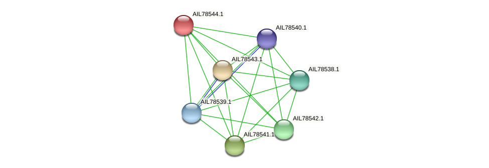 AIL78544.1 protein (Acinetobacter baumannii) - STRING interaction network
