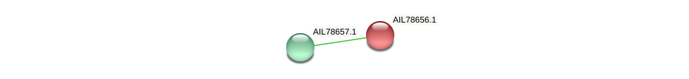 AIL78656.1 protein (Acinetobacter baumannii) - STRING interaction network