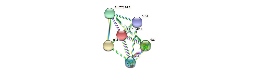 AIL78742.1 protein (Acinetobacter baumannii) - STRING interaction network