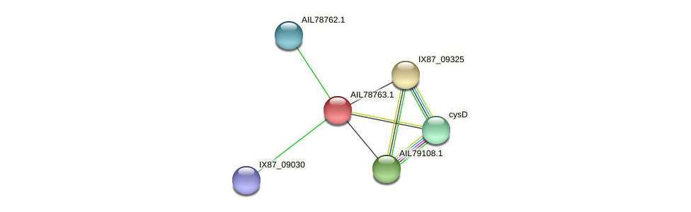 AIL78763.1 protein (Acinetobacter baumannii) - STRING interaction network