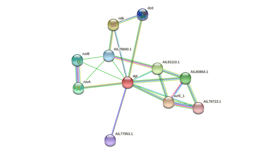 AIL78841.1 protein (Acinetobacter baumannii) - STRING interaction network