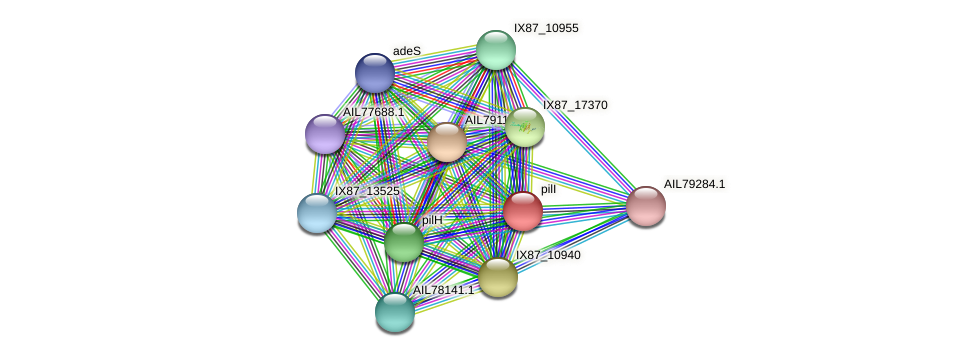 AIL79118.1 protein (Acinetobacter baumannii) - STRING interaction network