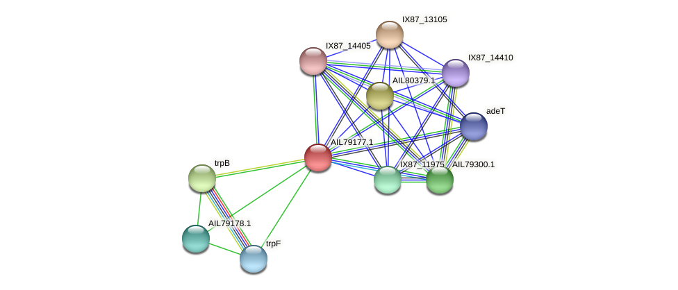 AIL79177.1 protein (Acinetobacter baumannii) - STRING interaction network