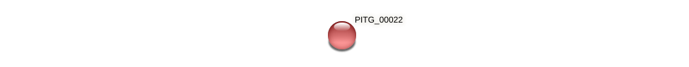PITG_00022 protein (Phytophthora infestans) - STRING interaction network