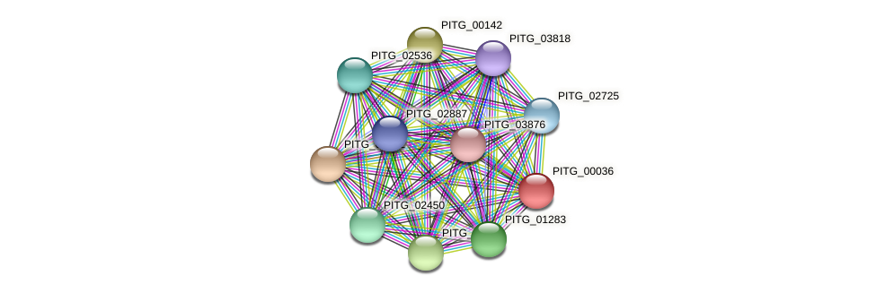 PITG_00036 protein (Phytophthora infestans) - STRING interaction network