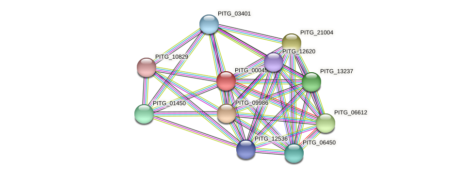 PITG_00045 protein (Phytophthora infestans) - STRING interaction network