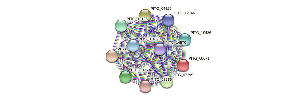 PITG_00071 protein (Phytophthora infestans) - STRING interaction network